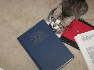 The pastor's cat is a Lutheran cat.